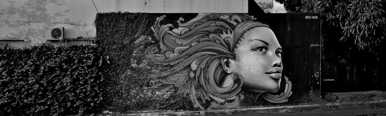 mural setor sul gyn Black And White Photography Close-up Day Lion - Feline Mulher Negra Murales Urbanos No People Outdoors Streetphotography