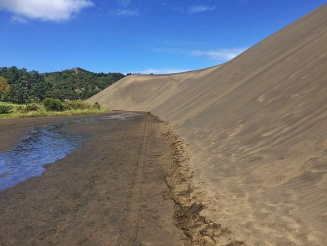Bethells lake Sand Dune Blacksand Fresh Water Exploring Summer 2016 Showcase March Beach Photography The Purist (no Edit, No Filter) Nature Photography Alone Time