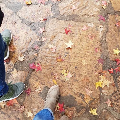 otoño en