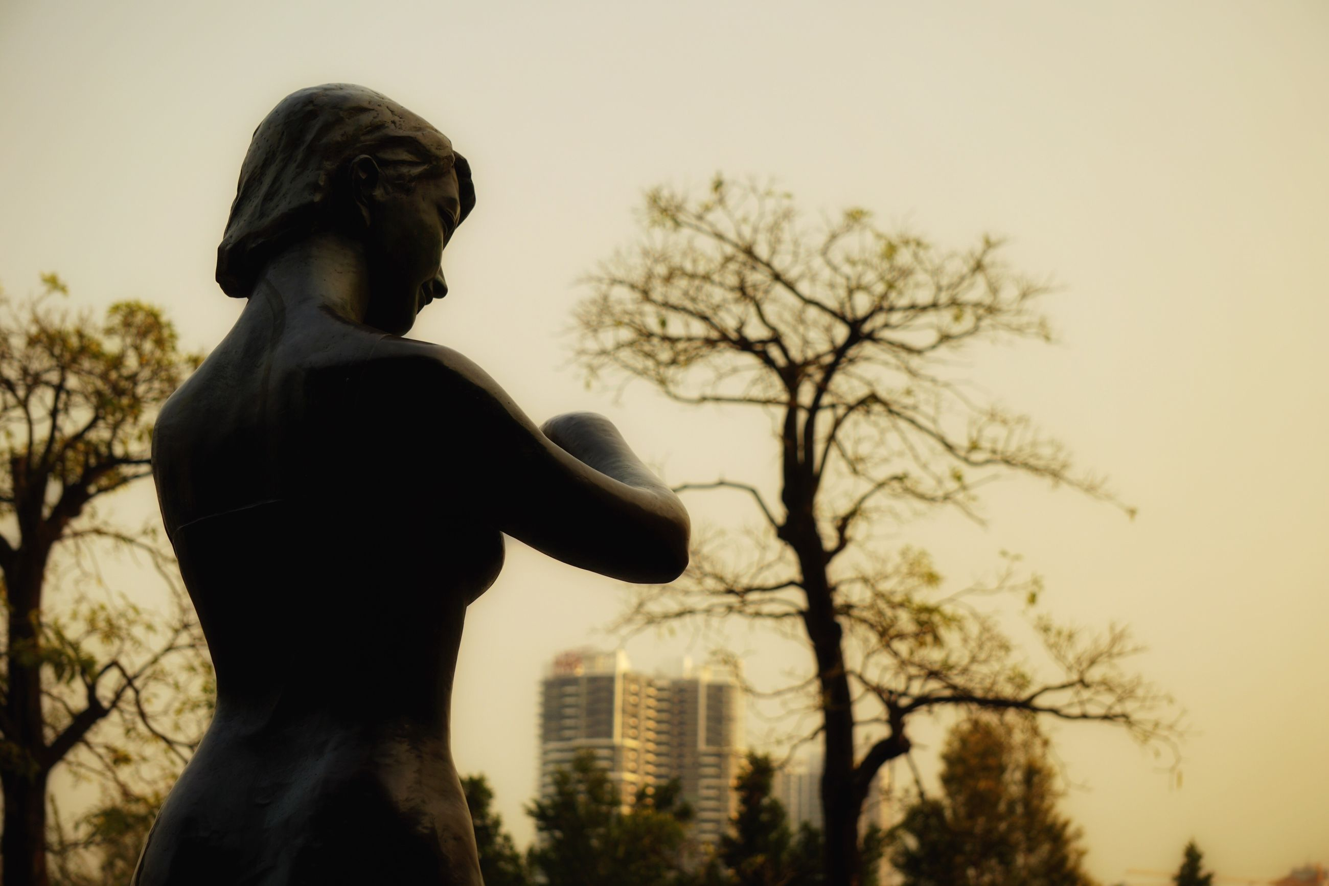tree, bare tree, statue, sculpture, low angle view, branch, art and craft, human representation, art, city, sky, clear sky, park - man made space, building exterior, creativity, city life, outdoors, day, tall - high, cloud - sky