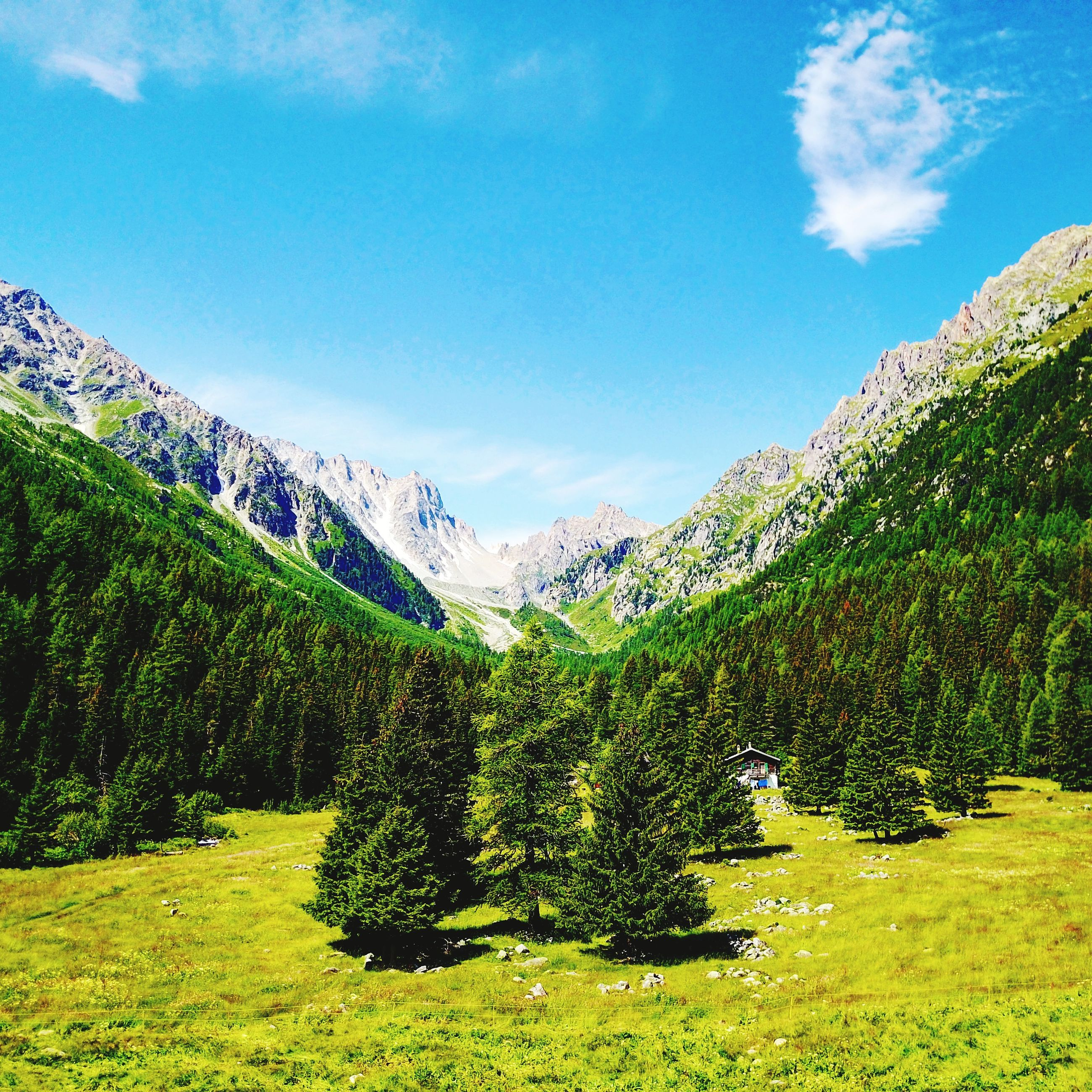 tranquil scene, scenics, mountain, tranquility, beauty in nature, nature, tree, green color, sky, day, landscape, outdoors, no people, mountain range, cloud - sky, growth, blue, forest