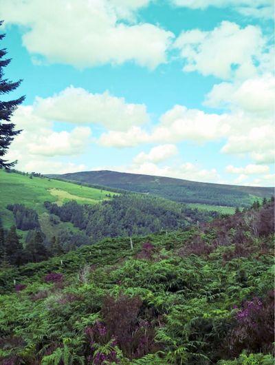 Sky Beautiful Nature Beautiful Blue Sky Ireland Hillside