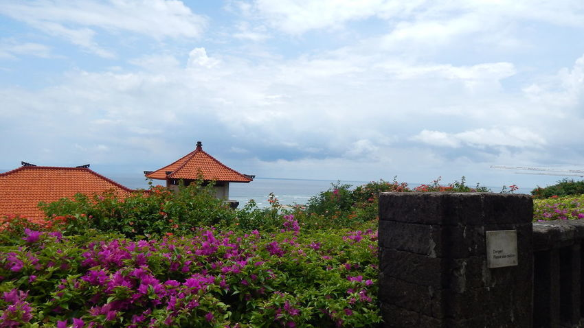 Bali Beauty In Nature Cloud - Sky Day Nature No People Outdoors Plant Sky EyeEmNewHere Be. Ready.