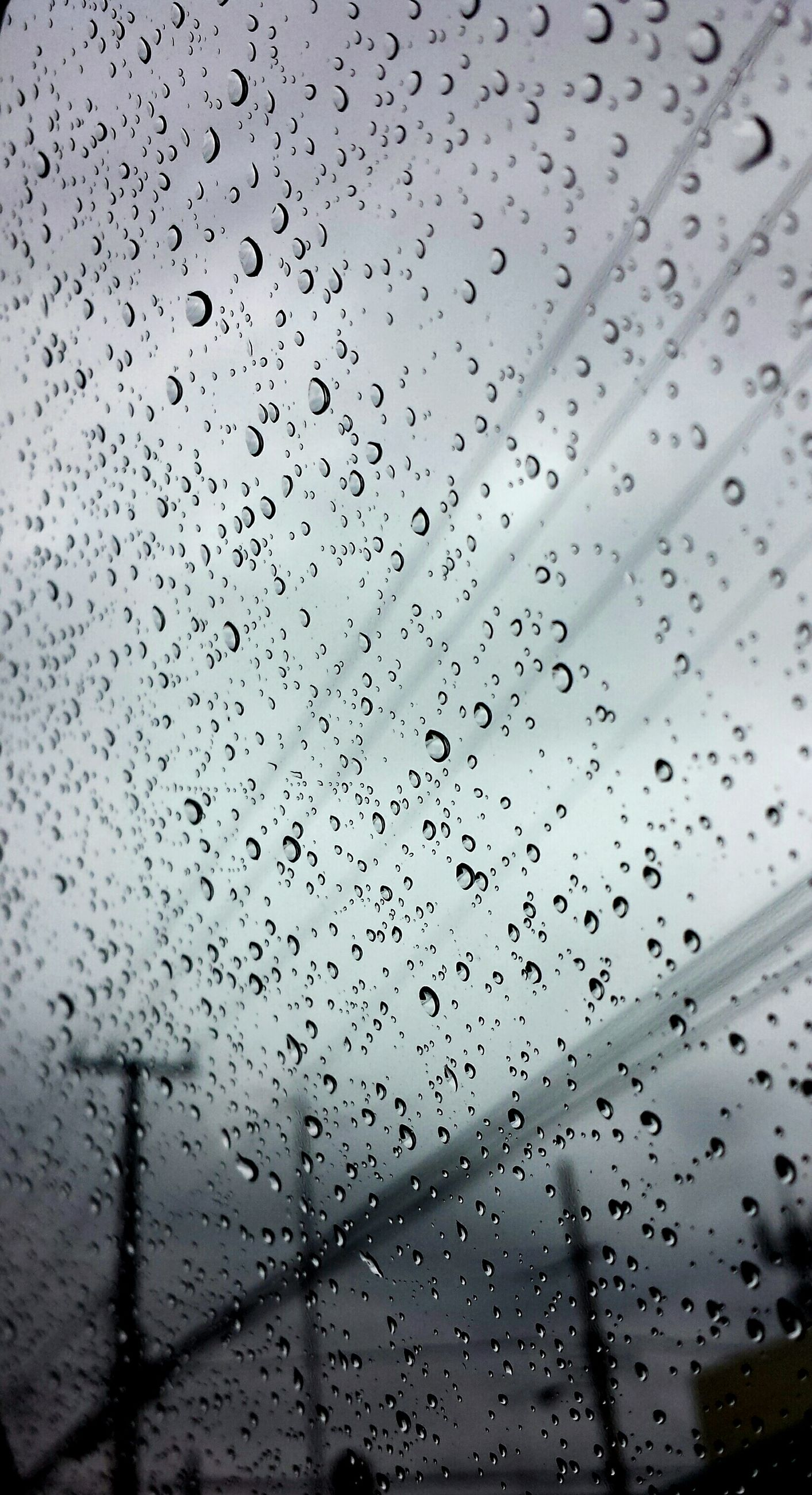 drop, wet, window, water, sky, rain, indoors, flock of birds, flying, animal themes, weather, backgrounds, full frame, transparent, glass - material, bird, silhouette, raindrop, low angle view