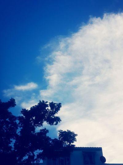 บนท้องฟ้า ?