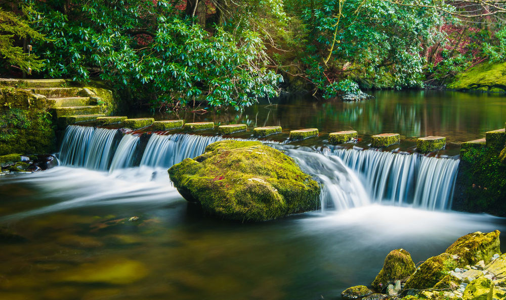 Beauty In Nature Blurred Motion Day Flowing Water Forest Long Exposure Motion National Park Nature No People Northern Ireland Outdoors River Rock Rock - Object Rock In The Water Scenics Stepping Stones Tollymore Forest Park Tranquil Scene Travel Destinations Travel Photography Tree Water Waterfall