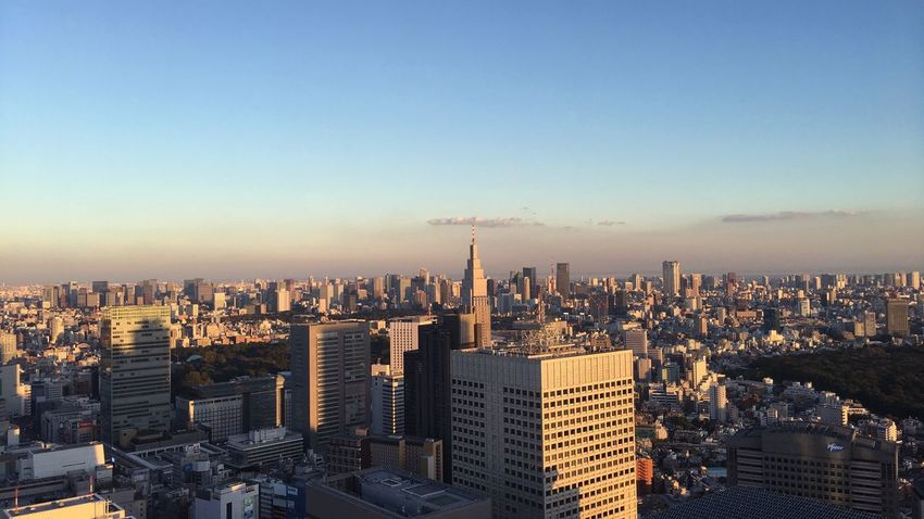 しかし、東京の空は、なんかこう……二分されている。なんかこう、毎日何かすることで綺麗にできるのかな。 City Cityscape Skyscraper Urban Skyline Sky 都庁 Sunset Urban Landscape Urban From My Point Of View Landscape EyeEm Best Shots EyeEmBestPics Walking Around Cityscapes Sunset_collection Sunset Silhouettes Shinjuku 新宿 Dusk 逢魔が時 ゆうやけ