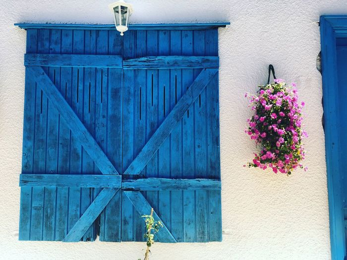 Fresh 🌸🍃🌺🍃🌸🍃🌼 Flower Architecture Building Exterior Built Structure Outdoors Day No People House Window Plant Blue Nature Fragility Window Box Close-up Photo Of The Day Photography Photo Çeşme Alaçatı Live For The Story The Street Photographer - 2017 EyeEm Awards The Great Outdoors - 2017 EyeEm Awards EyeEmNewHere
