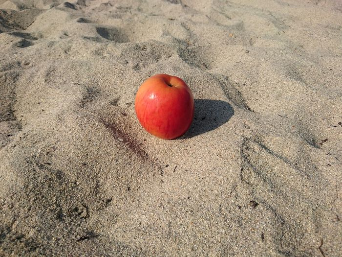 Apple Fruit Sand Beach Mobile Photography Red Fruits Miami Close-up Colors Outdoors Food