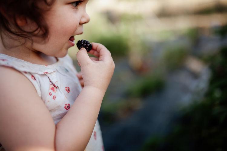 Little girl eating blackberries