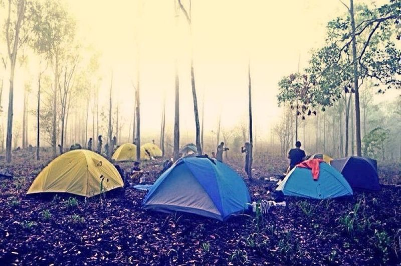 Camping, go green