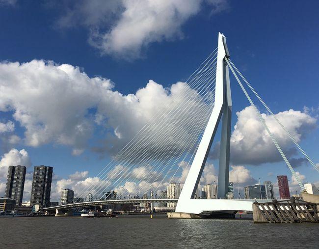 Erasmusbrug Bridge Blue Sky White Clouds Rotterdam