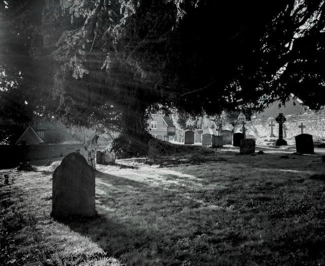 mysteries | cemetery Cemetery
