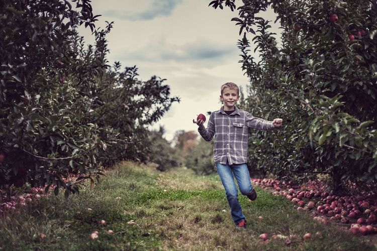 Portrait of boy holding apple while running on grass against sky