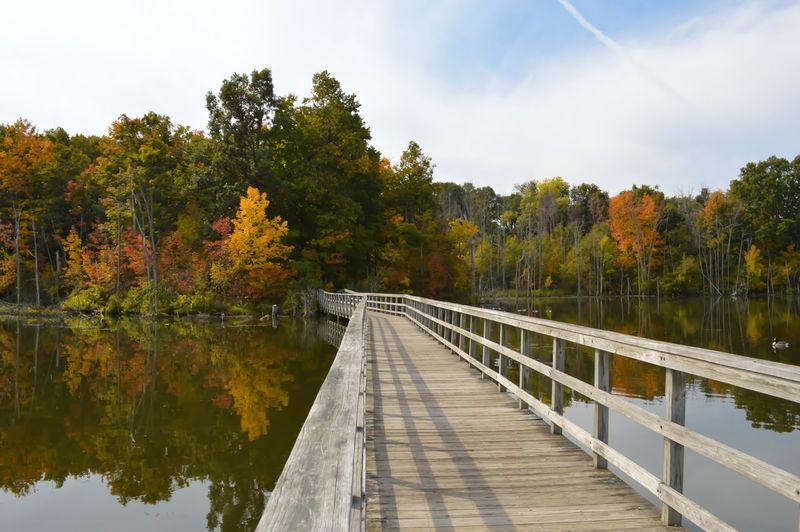 Footbridge over lake during autumn