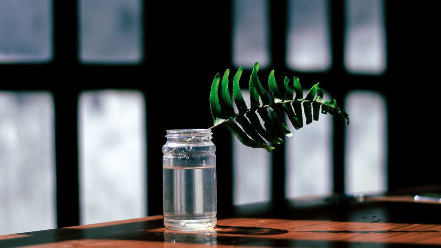 Close-up of plant part in glass jar on table