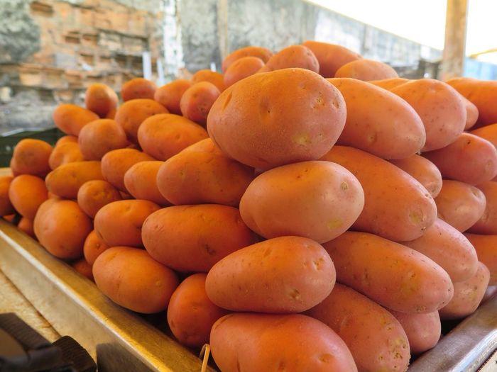 The Market Series Potatoes São Paulo 2014
