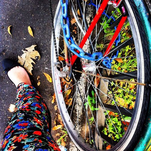 Colored Pants Colors Bicycle Summer