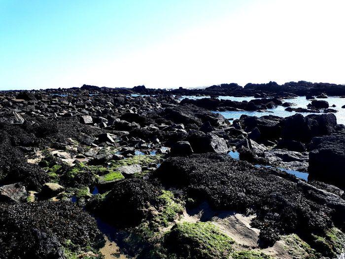 Clear Sky Sea