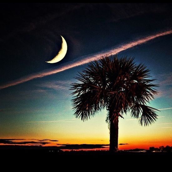The EyeEm Facebook Cover Challenge Beautiful Sunset Low Country Hello World