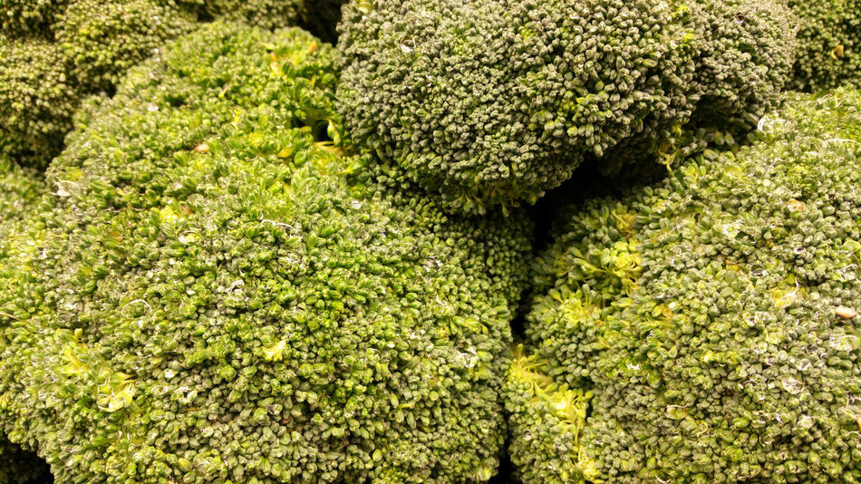 Broccoli heads with waterdrops Broccoli Close-up Food Food Photography Foodphotography Fresh Fresh Produce Freshness Freshness Full Frame Green Green Color Green Color Nature No People Organic Organic Food Raw Raw Food Three Vegetable Vegetables Vegetarian Vegetarian Food Waterdrops