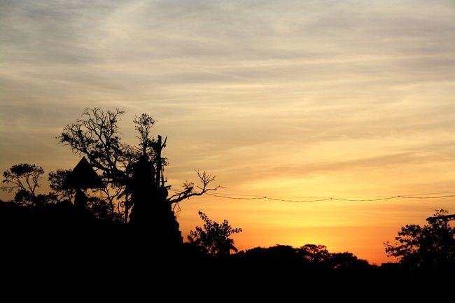 Silhouette Sunset Tree Tranquil Scene Sky Scenics Tranquility Branch Bare Tree Cloud Beauty In Nature Growth Nature Outdoors Outline Cloud - Sky Solitude Dark Calm Moody Sky First Eyeem Photo EyeTeam
