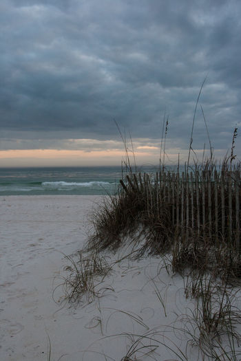 Florida Sunset Beach Fence Beauty In Nature Cloud - Sky Day Florida Gulf Of Mexico Horizon Over Water Marram Grass Nature No People Ocean Outdoors Peaceful Sand And Sea Scenics Sea Sea Oats Sky Sunset Tranquil Scene Tranquility Water