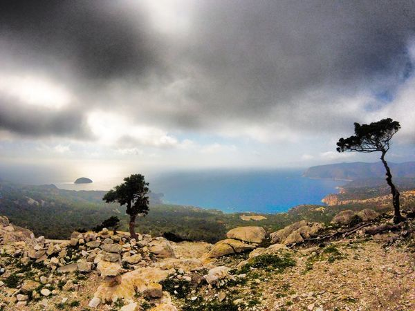 Tree Cloud - Sky Scenics Dramatic Sky Landscape Atmospheric Mood Nature Mountain Beauty In Nature Exploring Capture The Moment Scenery Shot Relaxing Sea Enjoy Life Seaview Friends Traveller Monolithos Castle Rhodes, Greece South Rhodes