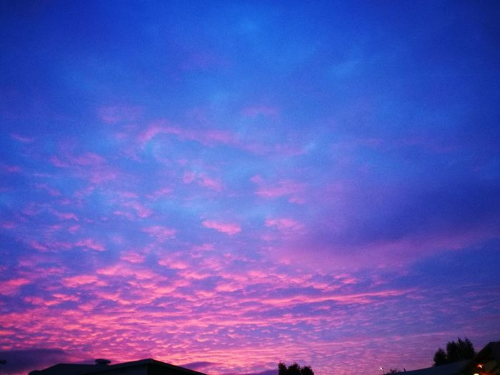 Night Pink