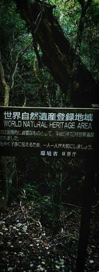 屋久島  (Yakushima Of The World Natural Heritage)