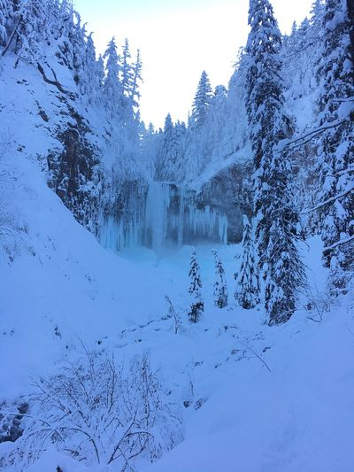 Snow Cold Temperature Winter Nature Tranquility Tranquil Scene Beauty In Nature Mountain Tree Scenics No People White Color Outdoors Frozen Weather Snowcapped Mountain Landscape Day Mountain Range Forest Frozen Water Fall