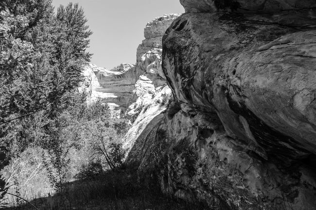Dinosaur National Monument Beauty In Nature Blackandwhite Cliff Day Landscape Nature No People Outdoors Rock - Object Rock Formation Scenics Sky Tranquil Scene Tranquility Tree Water