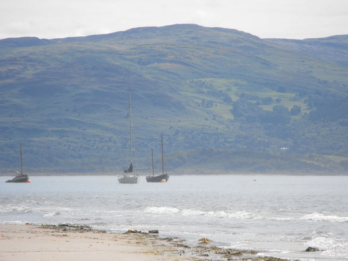 boats at Aberdovey Aberdovey Wales UK Beauty In Nature Day Land Mast Mode Of Transportation Mountain Mountain Range Nature Nautical Vessel No People Non-urban Scene Outdoors Sailboat Scenics - Nature Sea Tranquil Scene Tranquility Transportation Travel Water