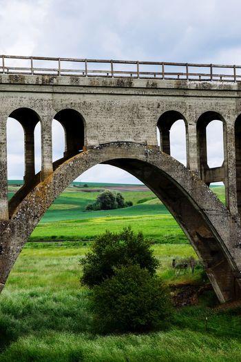 Arch Bridge -
