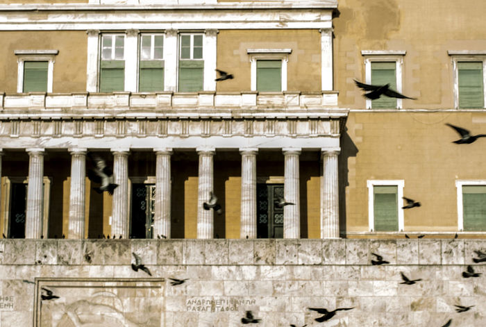 Athens Birds In Flight Building Exterior City Colours Cityscape Eye4photography  Getting Inspired Greek Parliament Parliament Parliament Building Pigeons In Flight Syntagma Square Urban Geometry Urbanscape