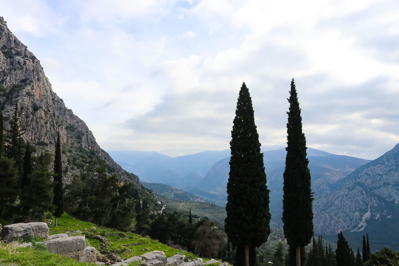 Mountainous landscape in Greece with cyprus trees in the foreground seen from Delphi ruins high in mountians Breathtaking Delphi Looking Down Mountain View Panorama Ruins Tranquility View Zeus Archeological Site Beauty In Nature Cypress Trees  Heritage High Angle View Mountain Mountain Range Nature Picturesque Scenics Temple Tourism Tranquil Scene Tranquility Tree Valley