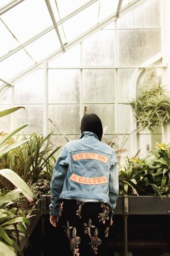 Rear view of man standing in greenhouse