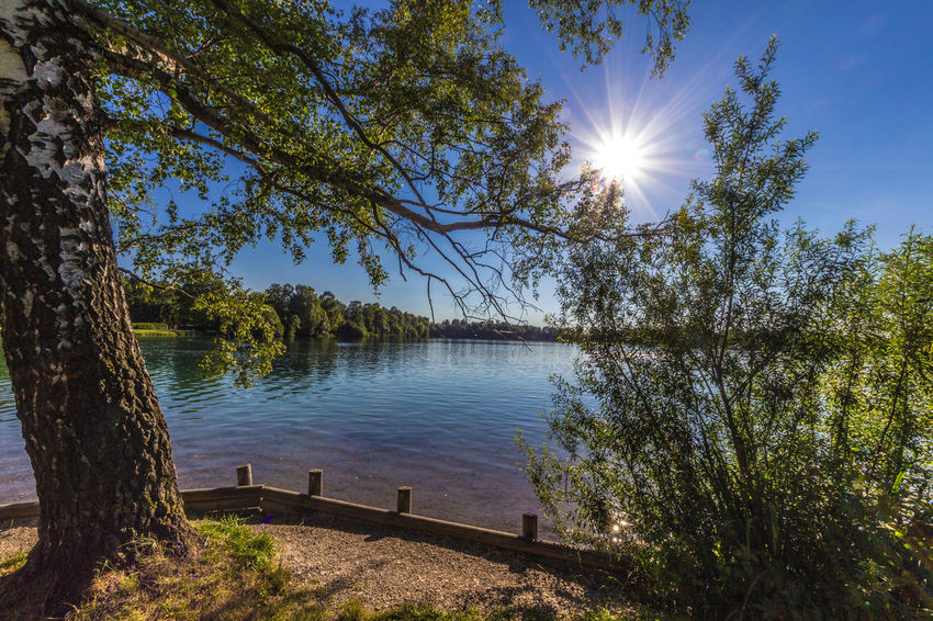 at Lake Olching Bavaria Sun Star Beauty In Nature Clear Sky Day Growth Idyllic Lake Lens Flare Nature No People Outdoors Scenics Sky Sun Sunbeam Sunlight Tranquil Scene Tranquility Tree Tree Trunk Water