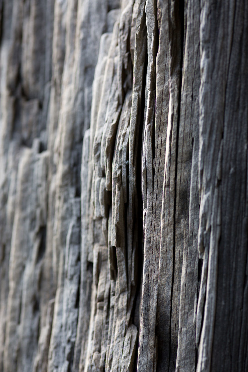 textured, backgrounds, nature, rough, close-up, no people, full frame, outdoors, pattern, day, tree