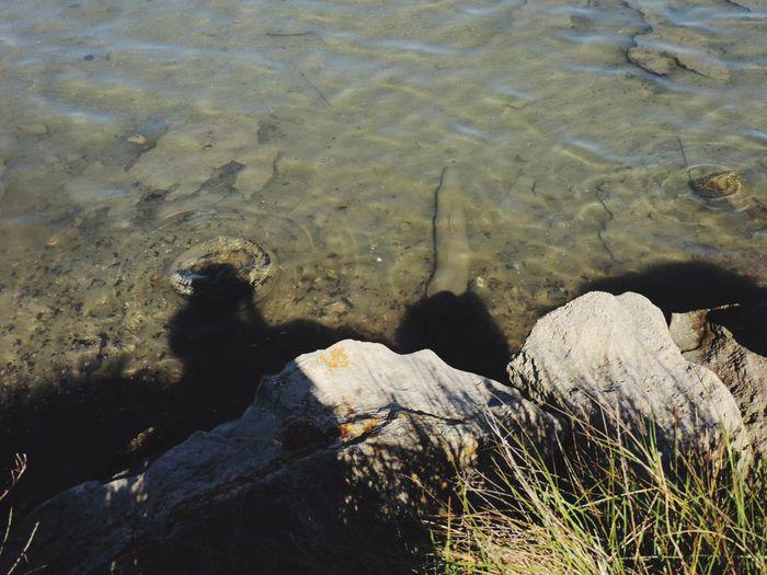 Nature's Diversities Water Reflections Shadows & Lights EyeEm Best Shots EyeEm Best Shots - Nature Shadows And Shades