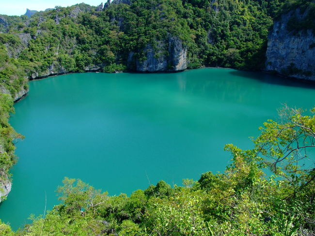 Samui, Thailand Beauty In Nature Island Nature No People Outdoors Scenics Tree Water