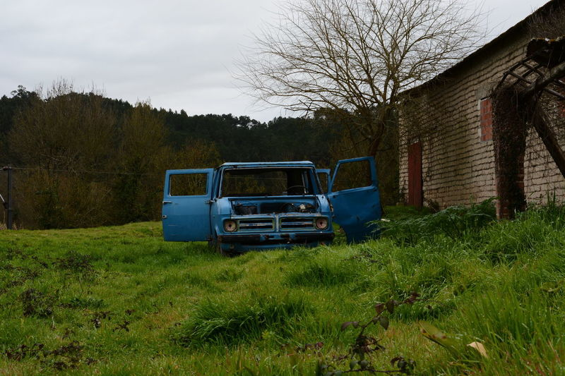 Agriculture Field Farm Tree Rural Scene No People Outdoors Growth Grass Day Sky Nature Van Old Van Waste Dented Dented Car Car Photography Abandoned Car Blue Car Sucata