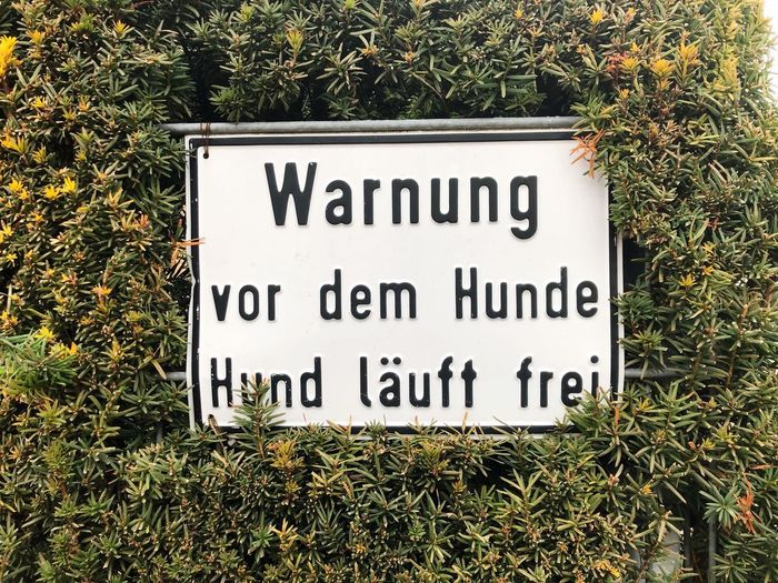 Dog Dogs Warning Warning Sign Text Western Script Plant Communication Sign Day Grass Field Green Color Land Growth Capital Letter Information Outdoors Information Sign Nature No People High Angle View Sunlight Script