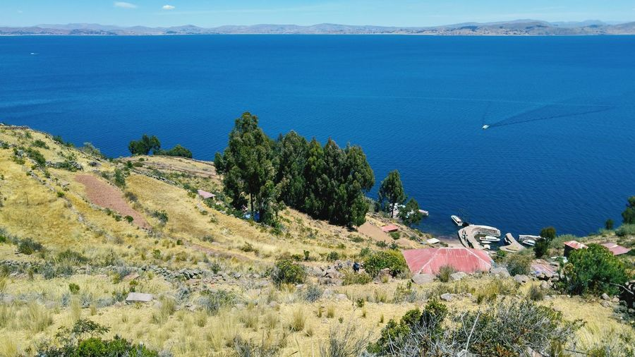 lake Titicaca Titicaca Titicaca Lake Peru EyeEm Selects Water Tree Sea Mountain Beach Sand Aerial View High Angle View Summer Sunlight