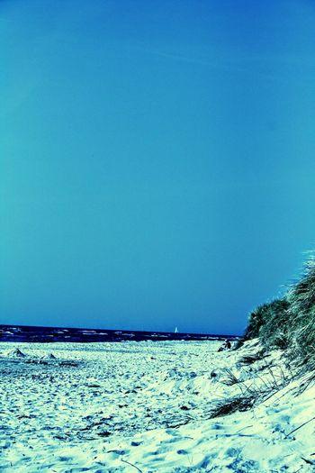 Beach Ystad Sandhammaren