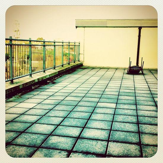 Frosty terrace ⛄ #earlybirdlove #cold #jj #jj_forum #ireland #decdaily Cold Ireland Jj  Earlybirdlove Jj_forum Decdaily
