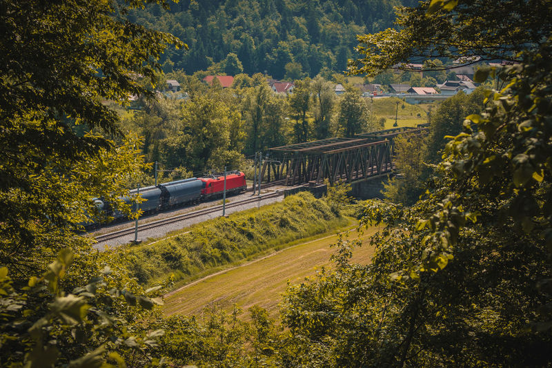 European freight train with red locomotive is driving on a two track railway line towards a metal trestle bridge. Romantic view through a hole in foliage. Angle Bridge Bridges Country Enbankment European  Foliage Green Hole Iron Landscape LINE Nature Old Rail Railroad Railway Red River Road Romantic Side Taurus Through Track Tracks Train Transport Transportation Travel Tree Trees Trestle Two Viaduct View