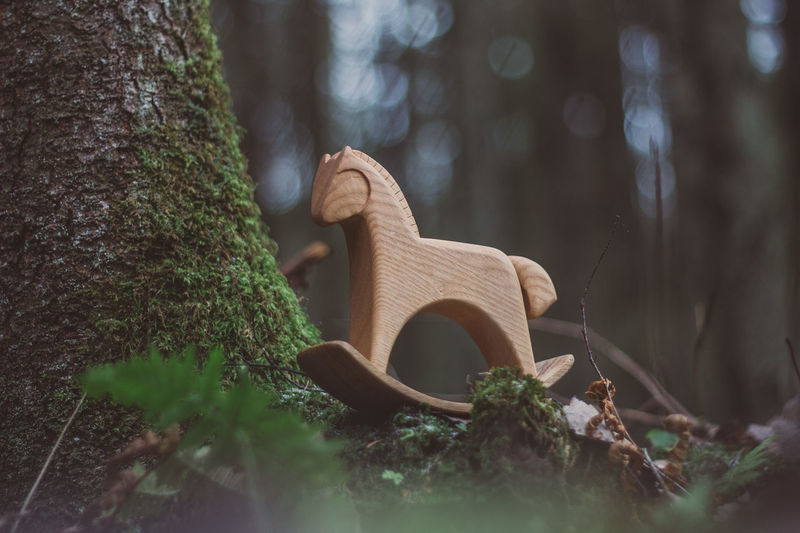 Forest Nature Women Wood Wood - Material Toy Toys Wooden Toys Wooden Horse Horse Tree Moss Summer Autumn Tree Trunk Trunk Plant Selective Focus Growth Day Land Outdoors No People Close-up Green Color Field Grass Tranquility Gardening