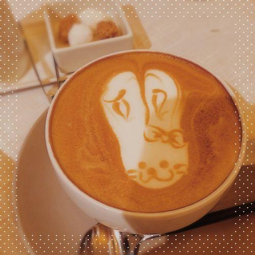 Cafe time<3 A rabbit ;) Bon Appetit Coffee Good Times