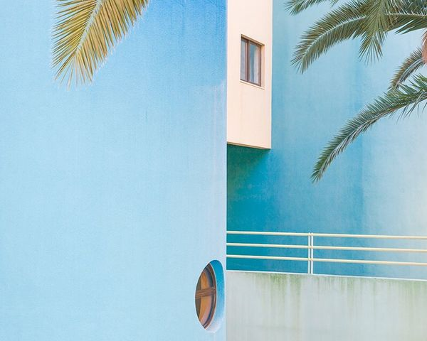 Lisboa , 2017 Palm Tree Tropical Climate Tree Blue Built Structure Architecture Plant No People Nature Building Exterior Wall - Building Feature Window